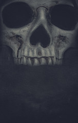 Human skull on dark background. Halloween grunge banner