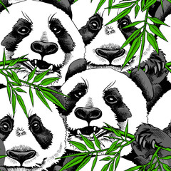Seamless pattern with image of a Panda eating branch of bamboo. Vector illustration.