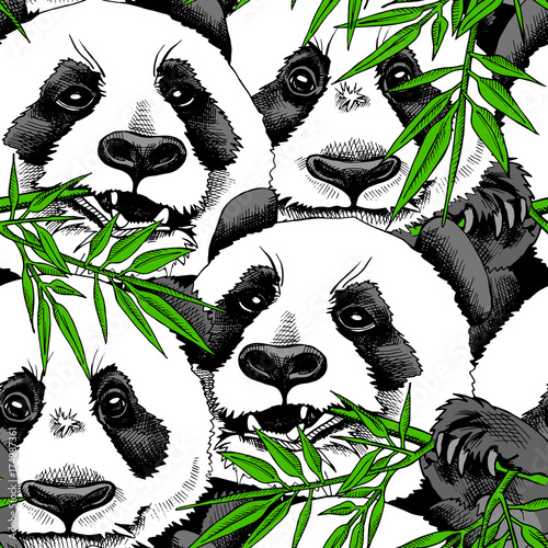 f0882754e3a Seamless pattern with image of a Panda eating branch of bamboo. Vector  illustration.