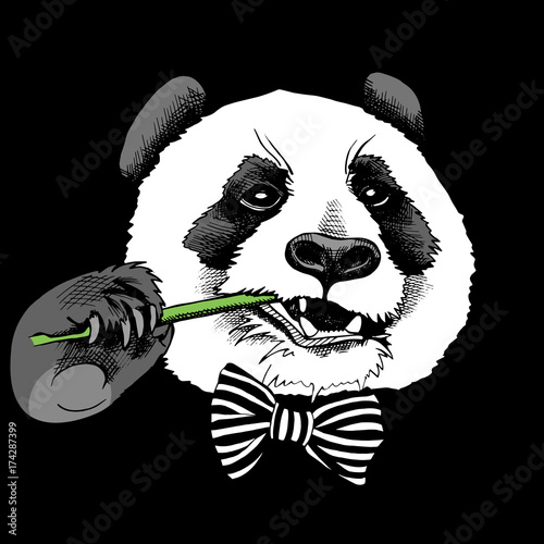 bb4cde7c617 Panda portrait in a tie with bamboo branch on black background. Vector  illustration.
