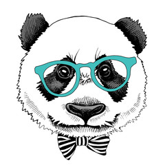 Panda portrait in a glasses with tie. Vector illustration.