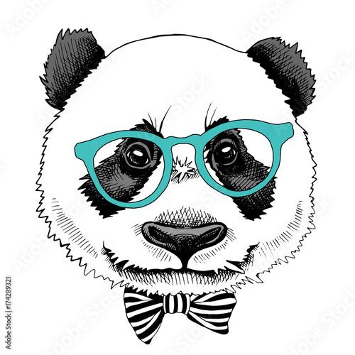 62459522e4b Panda portrait in a glasses with tie. Vector illustration.