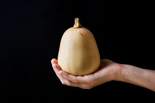 Young Woman Holding in Hand Small Butternut Squash White Pumpkin on Black Background. Harvest Halloween Thanksgiving Autumn Fall. Minimalist Styled Image. Copy Space.