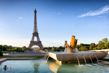 The Eiffel Tower seen from Trocadero on sunrise, Paris, France.