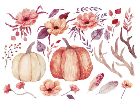 Big watercolor set with pumpkins, flowers and feathers. Also this set includes horns and branches. Hand drawn watercolor illustration