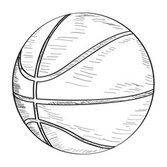 Isolated sketch of a basketball ball, Vector illustration