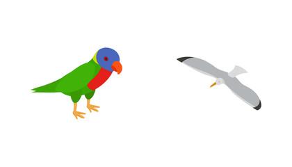 Birds icon set, isometric style