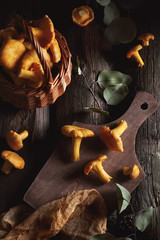 chanterelles on a wooden background