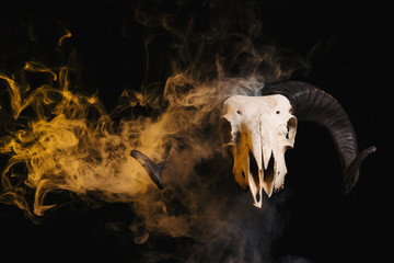 Ram skull with horns and yellow smoke