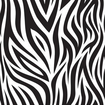 Zebra seamless pattern. Black and white tiger stripes. Popular texture.
