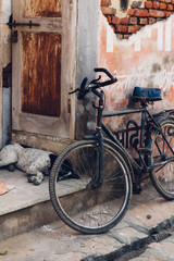 Close up of an old bike next a sleeping dog in a doorway
