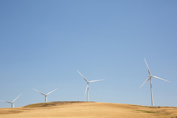 Wind turbines set against a sunny blue sky