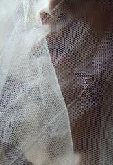 sensual lips behind a veil closeup