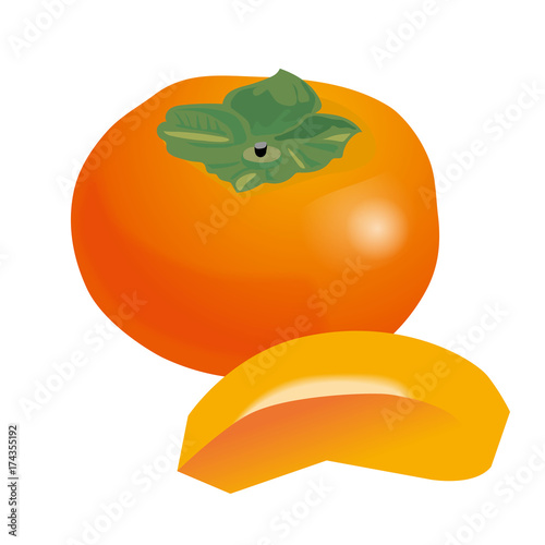 柿 カキのイラスト果物のイラストpersimmon Illustration Fotolia