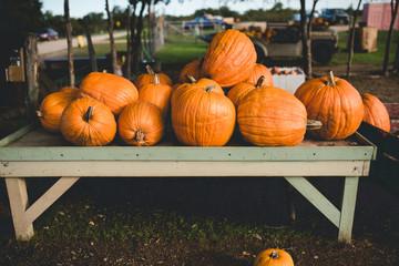 Table full of pumpkins