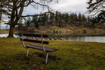 Bench in the nature surrounded by trees with a beautiful view. Picture taken in Pipers Lagoon Park, Nanaimo, Vancouver Island, BC, Canada, during a  winter morning.