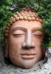 Statue of Head of Buddha in a park