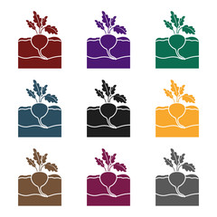 Fototapete - Beet icon in black style isolated on white background. Plant symbol stock vector illustration.