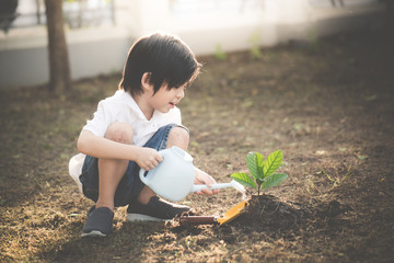 Cute Asian child watering young tree