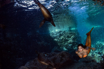 Mermaid swimming underwater in the deep blue sea with a seal