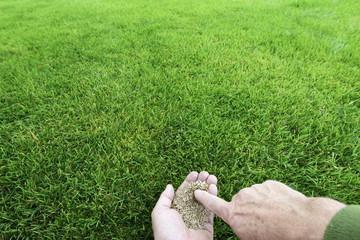 Grassamen - Finger - Bewegungsunschärfe
