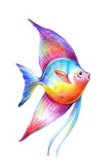 Color beautiful fish vector illustration. Hand drawing fish