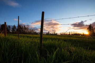 Beautiful landscape view on the farm field behind the barb wired fence. Taken during a cloudy sunset in Surrey, Greater Vancouver, British Columbia, Canada.