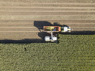 Aerial view of a harvest scene