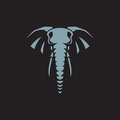 head elephant on black background