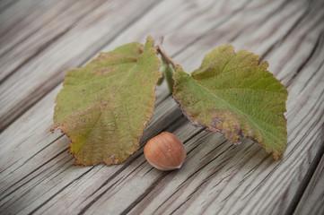 détail noisette et feuilles de noisetier sur un table en bois