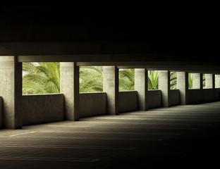 Palms Through the Garage