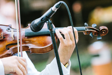 music, performance, orchestra concept. in delicate arms of caucasian man there is well known beautiful elegant musical string instrument violin made of wood