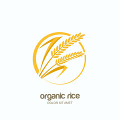 Vector logo, label or package emblem with yellow rice, wheat, rye grains. Concept for asian agriculture, organic cereal products, bread and bakery.