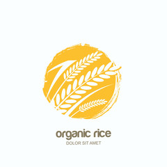 Vector logo, label or package watercolor hand drawn emblem with yellow rice, wheat, rye grains. Concept for asian agriculture, organic cereal products, bread and bakery.