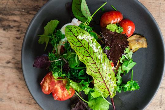 green side salad with olive oil dressing and sorrel leaf