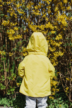 Rear view of child wearing a yellow jacket
