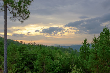 A post-sunrise look over the tops of trees in the Talladega National Forest into a valley near Heflin, Alabama, USA with foggy hills in the distance