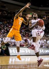 NCAA Basketball: Tennessee at South Carolina