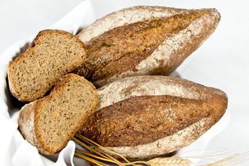 Italian typical bread