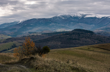 rolling hill with mountain ridge in late autumn. beautiful scenery with snowy tops of high mountain ridge in a distance