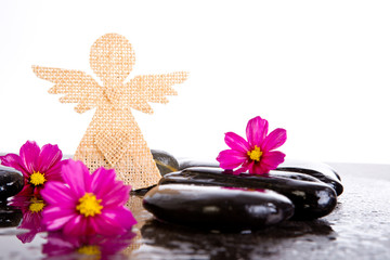 Pink Cosmos Flowers and burlap angel shape on black massage rocks with white background