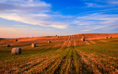 Hay bales on the field at sunset, Tuscany, Italy