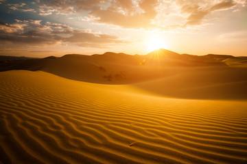 Poster de jardin Desert de sable Beautiful sunset in the Sahara desert