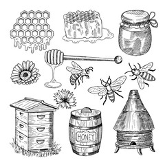 Honey, bee, honeycomb and other thematically hand drawn pictures. Vector vintage illustration