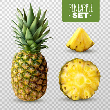 Realistic Pineapple Set