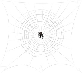 Spider in spiders web lurking for prey. Isolated vector comic illustration on white background.
