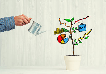 Drawn income tree in white pot for business investment savings and making money