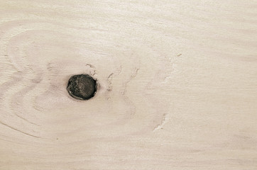 The surface of the treated wooden coatings on the wall.