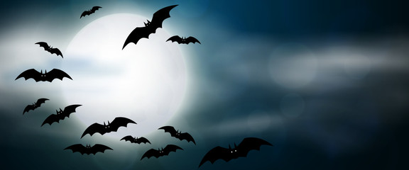 Night, full moon and bats, horizontal banner. Colorful scary Halloween illustration. Vector
