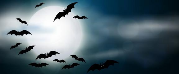 Night, full moon and bats, horizontal banner. Colorful scary Halloween illustration. Vector Fotoväggar
